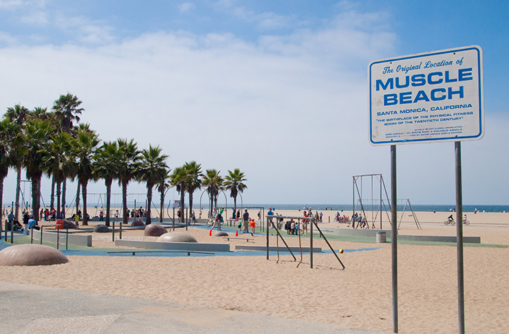 muscle-beach-is-coming-to-mission-bay.jpg#asset:499